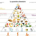 Equilibre alimentaire journalier